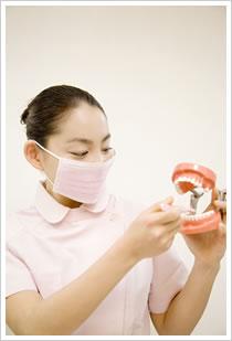 歯の磨き方イメージ写真